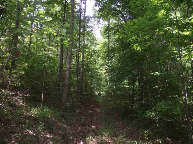 1 Cherokee Cir, Waynesboro, TN 38485 (#9983290) :: The Wallace Team - RE/MAX On Point