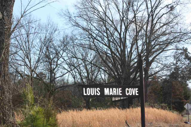 100 Louis Marie Cv, Unincorporated, TN 38028 (#9993316) :: The Wallace Team - RE/MAX On Point