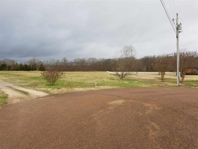285 Julie Cv, Unincorporated, TN 38002 (#9996513) :: The Wallace Team - RE/MAX On Point