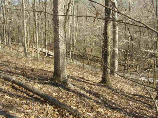 6 Sandy Creek Ln, Iuka, MS 38852 (#9998527) :: The Melissa Thompson Team