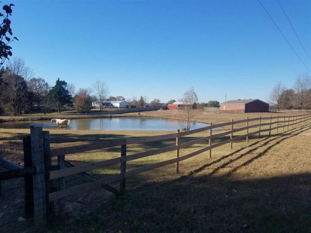 475 Tomlin Rd, Unincorporated, TN 38068 (#10016136) :: The Wallace Team - RE/MAX On Point