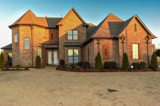 4857 Davis Grove Blvd, Olive Branch, TN 38654 (#10019942) :: The Wallace Team - RE/MAX On Point