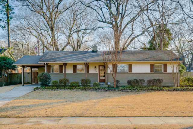 4239 Sequoia Rd, Memphis, TN 38117 (#10020216) :: The Wallace Team - RE/MAX On Point