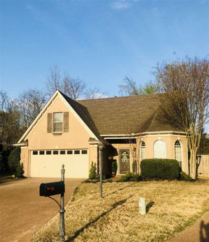 10087 Woodland Pine Cv E, Lakeland, TN 38002 (#10024040) :: The Wallace Team - RE/MAX On Point