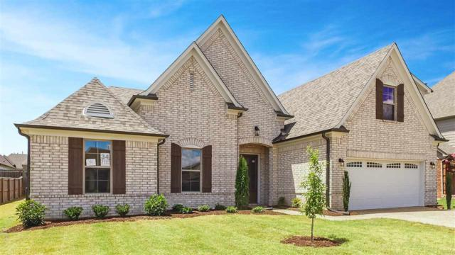 7119 Windswept Ln, Olive Branch, MS 38654 (#10028330) :: The Melissa Thompson Team