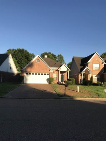 2390 Oak Springs Dr, Memphis, TN 38016 (#10028961) :: JASCO Realtors®