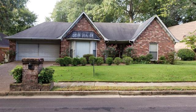 8905 Walnut Ridge Loop, Memphis, TN 38018 (#10038879) :: JASCO Realtors®