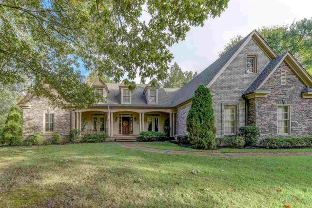 9905 Memphis-Arlington Rd, Lakeland, TN 38002 (#10039073) :: ReMax Experts