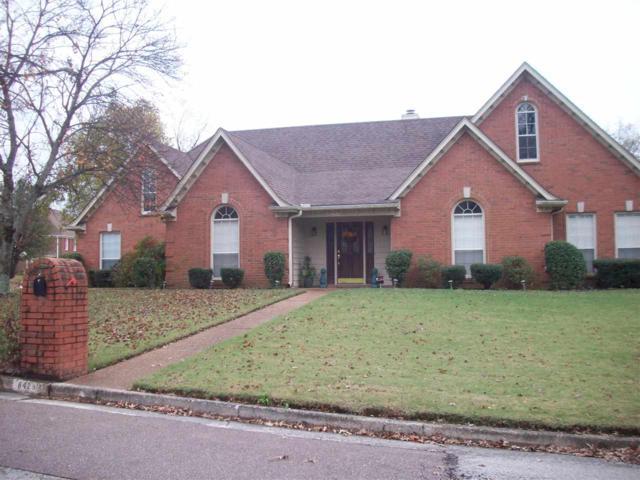 8429 Ridge Fall Cv, Memphis, TN 38018 (#10040676) :: All Stars Realty