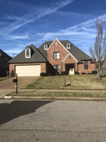 7656 Romero Dr, Arlington, TN 38002 (#10040854) :: The Wallace Group - RE/MAX On Point