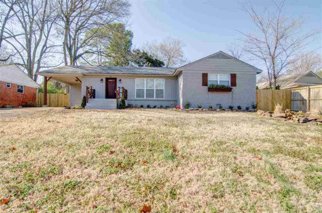 151 W Bendel Cir, Memphis, TN 38117 (#10044313) :: ReMax Experts