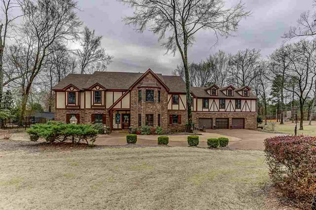 9125 Forest Downs Dr, Germantown, TN 38138 (#10046930) :: The Melissa Thompson Team