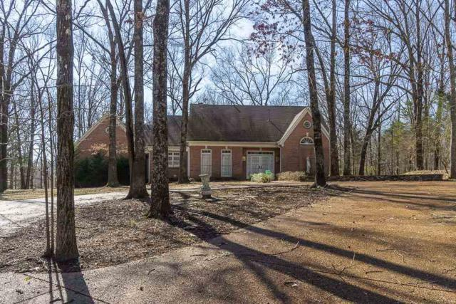 615 Shady Hollow Cv, Unincorporated, TN 38028 (#10047676) :: The Wallace Group - RE/MAX On Point