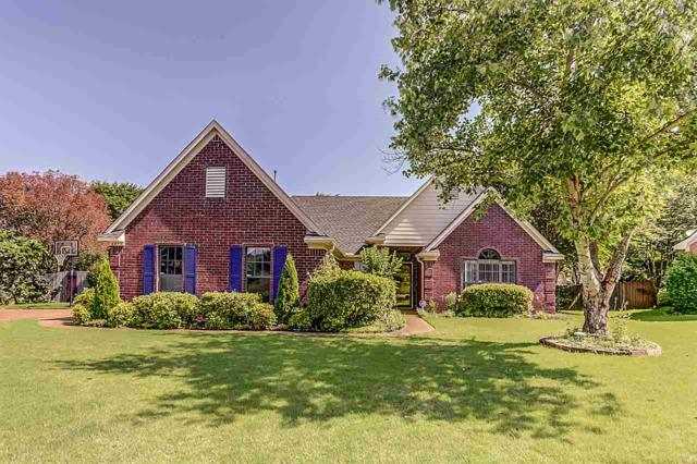 6872 Cottontail Cv, Bartlett, TN 38002 (#10053530) :: RE/MAX Real Estate Experts
