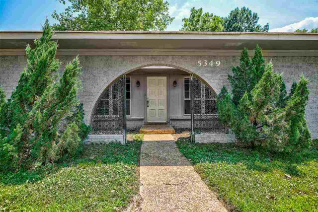 5349 Meadowick Ave, Memphis, TN 38115 (#10054243) :: All Stars Realty