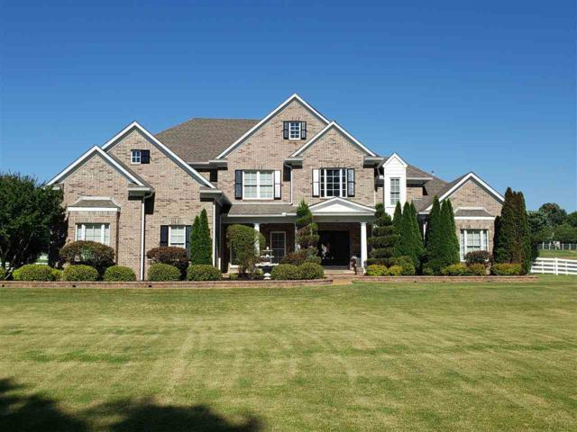 294 Southmill Dr, Unincorporated, TN 38028 (#10054610) :: The Wallace Group - RE/MAX On Point