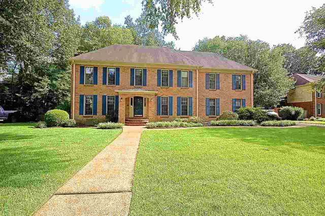 8411 Beaverwood Dr, Germantown, TN 38138 (#10057826) :: RE/MAX Real Estate Experts