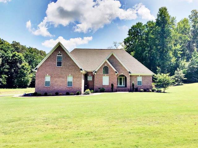 1300 Oxford Creek Rd, Selmer, TN 38375 (#10059633) :: RE/MAX Real Estate Experts