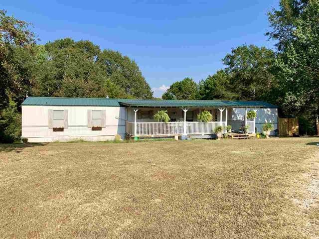 5 Cr 250 Dr, Iuka, MS 38852 (#10063259) :: ReMax Experts