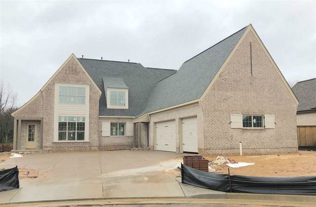 10704 Magnolia Park Cir N, Collierville, TN 38017 (#10068683) :: RE/MAX Real Estate Experts
