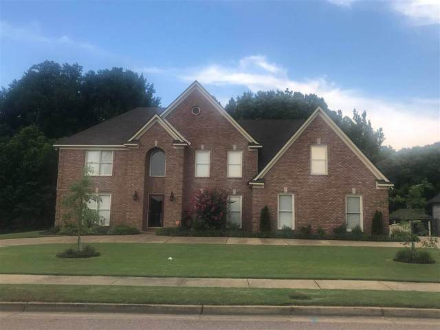 4928 Valley Birch Dr, Bartlett, TN 38002 (#10073707) :: The Wallace Group - RE/MAX On Point