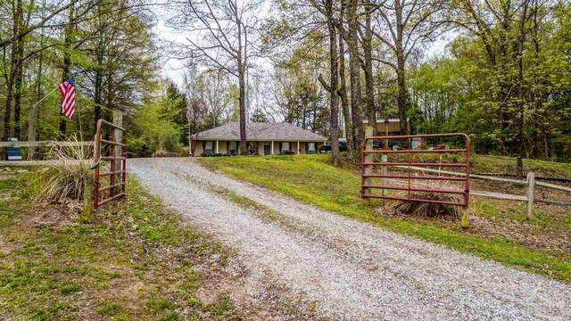1215 Stafford Dr, Unincorporated, TN 38068 (#10073760) :: ReMax Experts