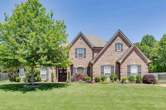 8738 Carriage Creek Rd, Bartlett, TN 38002 (#10076937) :: RE/MAX Real Estate Experts