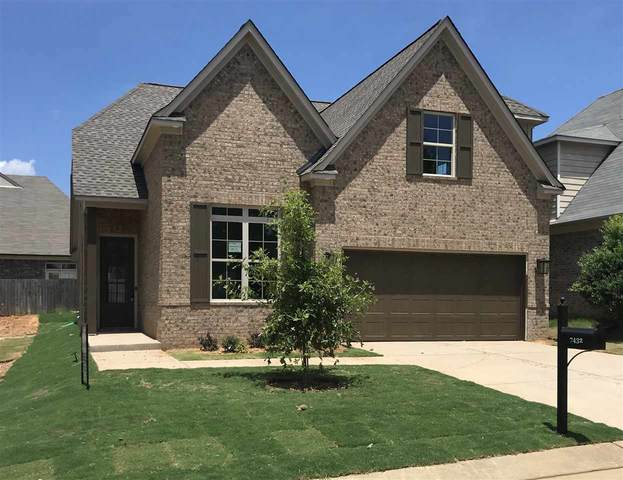 7432 Appling Rain Dr, Cordova, TN 38016 (#10079528) :: All Stars Realty