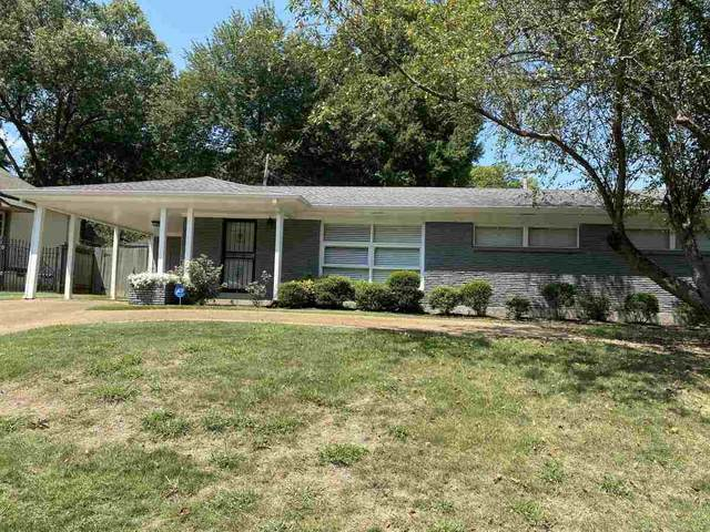 295 N White Station Rd, Memphis, TN 38117 (MLS #10082960) :: The Justin Lance Team of Keller Williams Realty