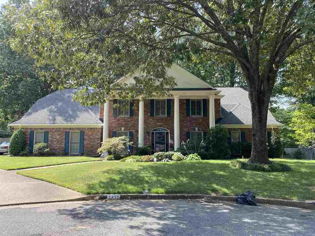 7425 Meadow Rise Cv, Memphis, TN 38119 (#10084355) :: The Wallace Group - RE/MAX On Point