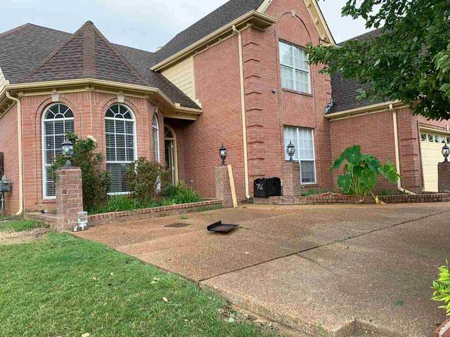 4066 Chesapeake Way, Memphis, TN 38125 (#10084639) :: Bryan Realty Group