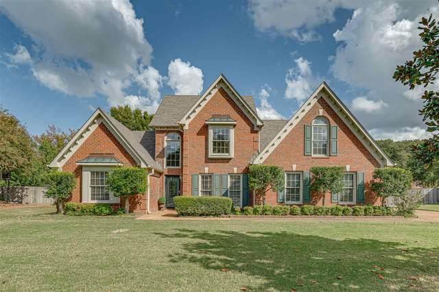 8578 Riverwood Farms Park, Memphis, TN 38016 (#10087408) :: All Stars Realty