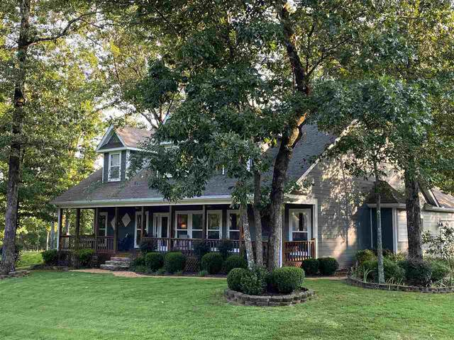 20 Grapevine Cv, Counce, TN 38326 (#10091945) :: RE/MAX Real Estate Experts