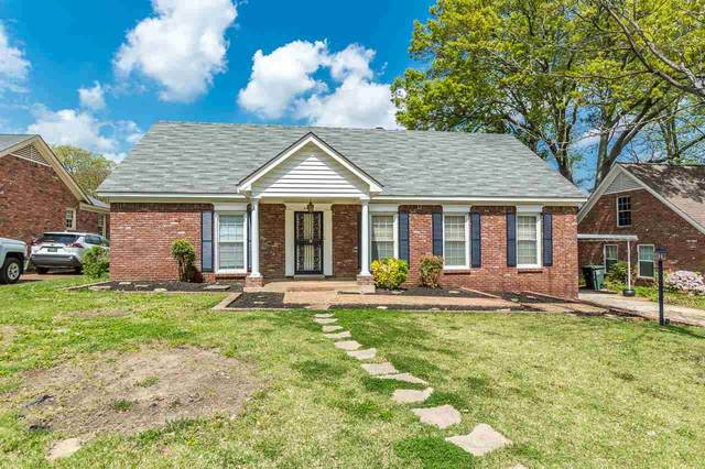 5346 Sequoia Ave, Memphis, TN 38120 (#10094018) :: RE/MAX Real Estate Experts