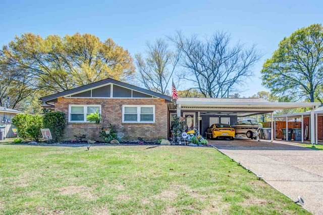 5167 Whitecliff Dr, Memphis, TN 38117 (#10095864) :: The Wallace Group - RE/MAX On Point