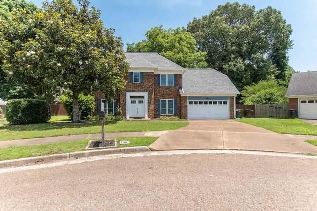 3824 N Bluff Pt, Bartlett, TN 38135 (#10101346) :: The Home Gurus, Keller Williams Realty