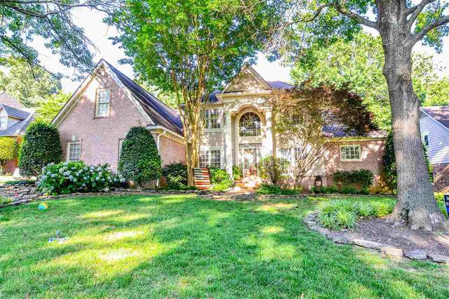 762 Evans View Cv, Collierville, TN 38017 (#10102920) :: Area C. Mays | KAIZEN Realty