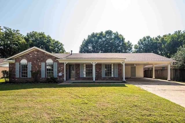 3140 Rosebay Ln, Bartlett, TN 38134 (MLS #10107740) :: Your New Home Key