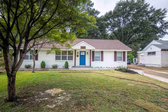 1185 Marcia St, Memphis, TN 38117 (#10108953) :: The Wallace Group at Keller Williams