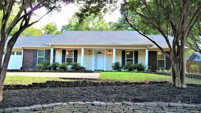 8559 Walnut Grove Rd, Memphis, TN 38018 (#10109353) :: J Hunter Realty