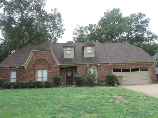 4285 Old Forest Rd, Memphis, TN 38125 (MLS #10109867) :: Your New Home Key