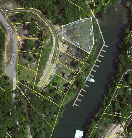6 Breeze Point Cir, Savannah, TN 38372 (#9960922) :: Bryan Realty Group