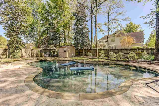 9873 S Houston Way, Collierville, TN 38139 (#10055019) :: RE/MAX Real Estate Experts