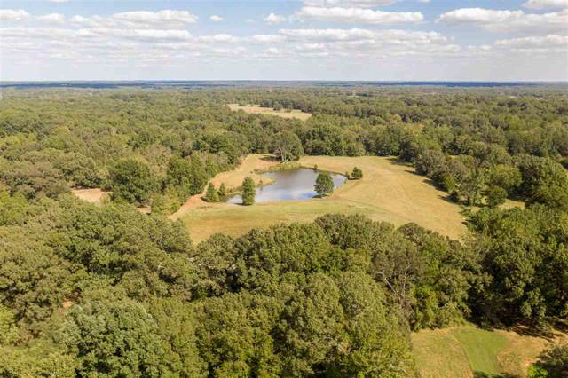 8890 Hwy 196 Hwy, Unincorporated, TN 38017 (#10063325) :: ReMax Experts