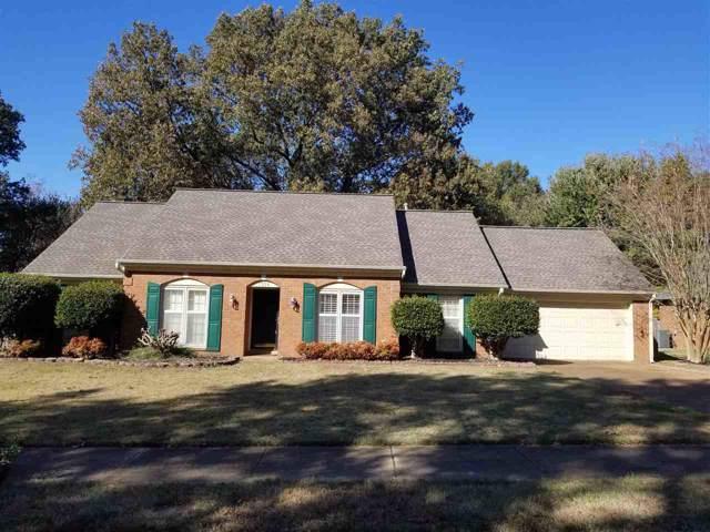 7356 Abercrombie Ln, Memphis, TN 38119 (#10065279) :: RE/MAX Real Estate Experts