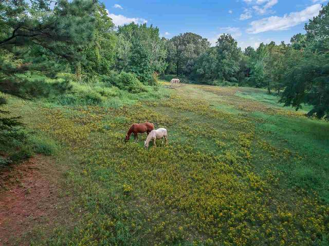 5352 Riverdale Rd, Unincorporated, TN 38141 (#10085078) :: The Melissa Thompson Team