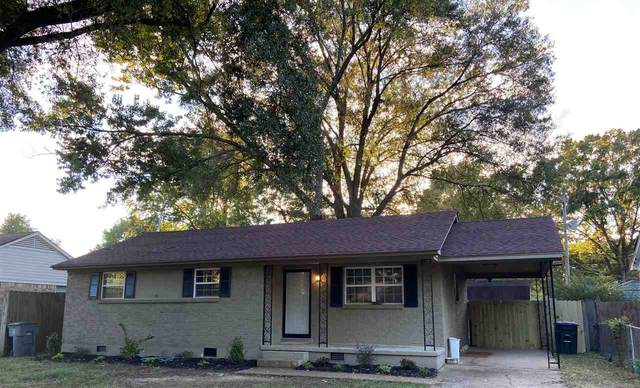 517 Malboro Dr, Memphis, TN 38120 (#10085823) :: The Wallace Group - RE/MAX On Point