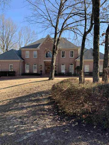 5295 Wedgewood Dr, Olive Branch, MS 38654 (#10090674) :: The Wallace Group - RE/MAX On Point