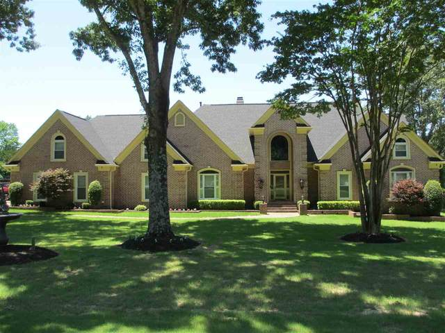 3389 Forest Hill-Irene Rd, Germantown, TN 38138 (#10101759) :: J Hunter Realty
