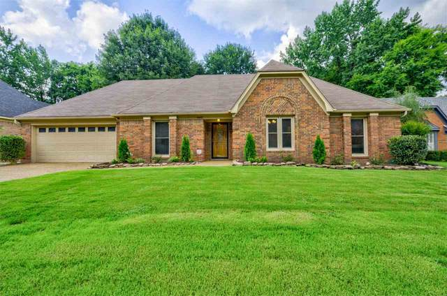 8402 Walnut Tree Ln, Memphis, TN 38018 (#10104617) :: All Stars Realty